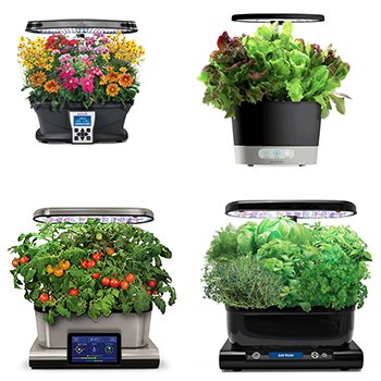 Complete Safe List Of Aerogarden Plants & Recipes To Try With Them