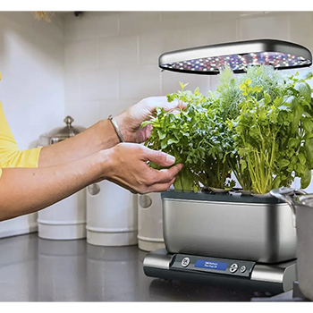Useful Aerogarden Plant Hacks You Must Know
