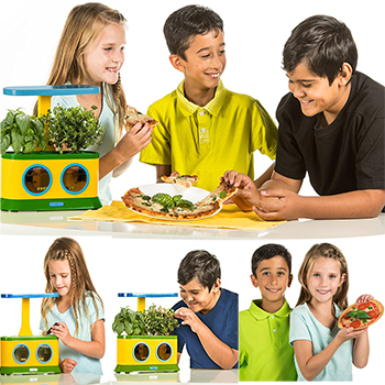 All You Should Know About The Aerogarden Herbie Kids Pizza Party Herb Garden-Review